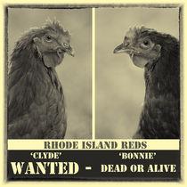 Bonnie & Clyde Wanted Poster von Howard Cheek