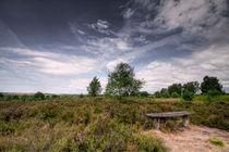 Lüneburger Heide von photoart-hartmann