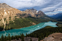 Early Morning on Peyto Lake by Kathleen Bishop