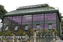Art Nouveau Greenhouse by alina8