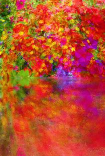 'Potpourri Reflect' by Robert Gipson