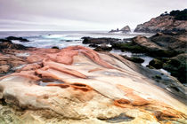 Point Lobos State Park by Chris Frost