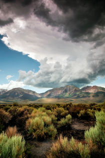 Storms at Mono Lake by Chris Frost