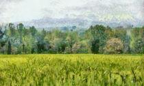 Green view von dado