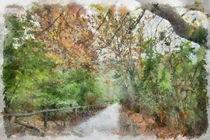 Autumn promenade by dado