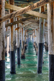 Under The Dock von agrofilms