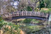 UC Davis Arboretum Bridge von agrofilms