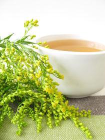 Tee mit Goldrute von Heike Rau