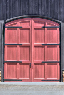 A Great Door by agrofilms
