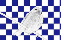 Besser der Spatz an der Wand als die Taube auf dem Dach blau/weiss - A bird on the wall is worth two in the bush blue/white von mateart