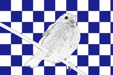 Spatz-kacheln-blau-weiss