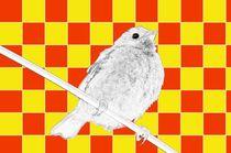 Besser der Spatz an der Wand als die Taube auf dem Dach rot/gelb - A bird on the wall is worth two in the bush yellow/red by mateart