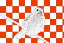 Besser der Spatz an der Wand als die Taube auf dem Dach rot/weiss - A bird on the wall is worth two in the bush red/white von mateart