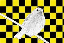 Besser der Spatz an der Wand als die Taube auf dem Dach gelb/schwarz - A bird on the wall is worth two in the bush yellow/black by mateart