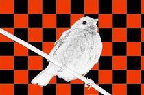 Besser der Spatz an der Wand als die Taube auf dem Dach rot/schwarz - A bird on the wall is worth two in the bush red/black by mateart