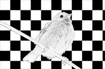 Besser der Spatz an der Wand als die Taube auf dem Dach schwarz/weiss - A bird on the wall is worth two in the bush black/white by mateart
