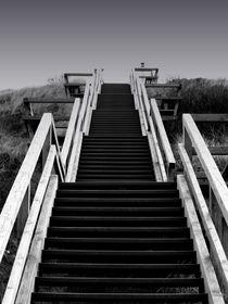 Die letzte Hürde by Jeanine H