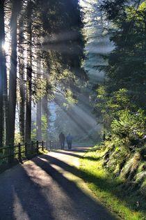 Sonntagsspaziergang von Bernhard Kaiser