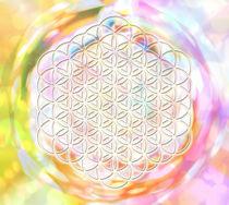 Blume des Lebens - Flower of Metatron - Diamant von Chuya Shi