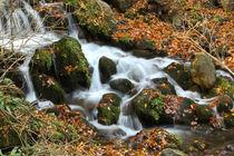 River von Evren Kalinbacak