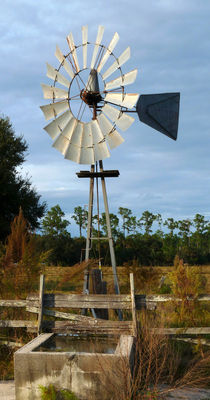 Windmill Pump. Charles Bronson State Forest. Seminole County FL by chris kusik