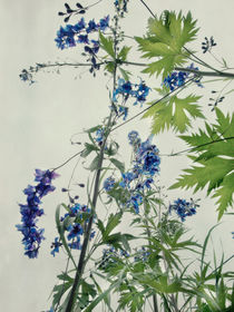 blue spikes of larkspur by Priska  Wettstein