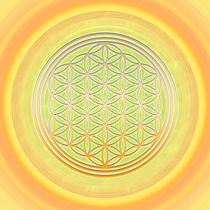 Blume des Lebens - Flower of Life -Das Sonnentor von Chuya Shi