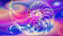 Nautilis ONE - The Golden Ratio  von Chuya Shi