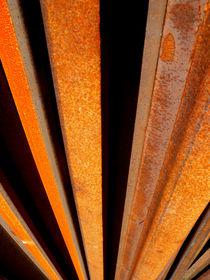 Steel Rails by Robert Riordan