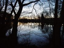See in der Abenddämmerung  von Elke Baschkar
