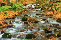 River by Evren Kalinbacak