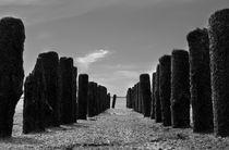 Buhne an der Nordsee - Groyne on the North Sea von ropo13