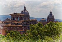 Rooftops of Rome by David Pringle