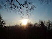 Sonnenaufgang an einem Dezembermorgen von Elke Baschkar