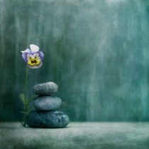 'confidence' by Priska  Wettstein