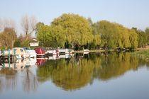 river reflection von mark severn