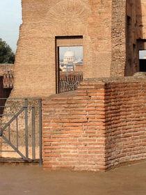 Roman Forum. by Tatyana Samarina