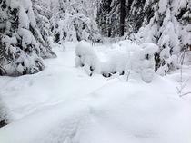 Snow Puddle. by Tatyana Samarina