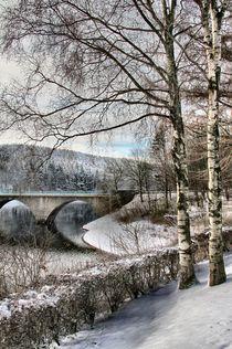 'Winter am See' by Bernhard Kaiser