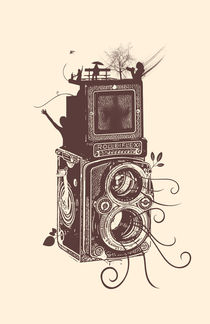Retro Rolleiflex - Evolution of Photography - Vintage von Denis Marsili