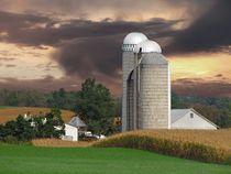 Sunset on the Farm by David Dehner