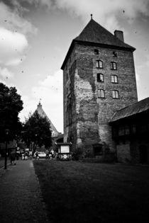 Malbork Castle Tower von olgasart