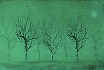 Winter Trees In The Mist by David Dehner