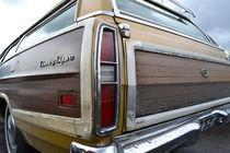 Ford LTD Station Wagon by aengus