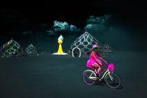 Burning Man 2012 von Zohar Lindenbaum