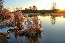 Wintermorgen by Bernhard Kaiser
