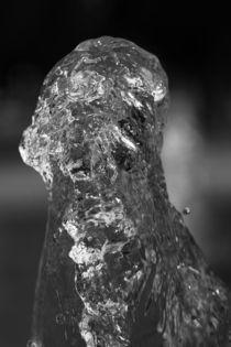 watervertical by dresdner