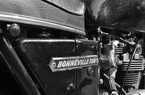 Triumph Bonneville 750 von aengus