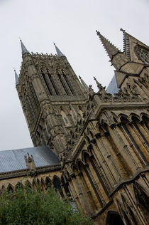 Lincoln Cathedral by Renata Davies