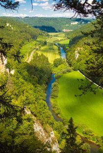 Blick vom Knopfmacherfelsen ins Donautal by Matthias Hauser